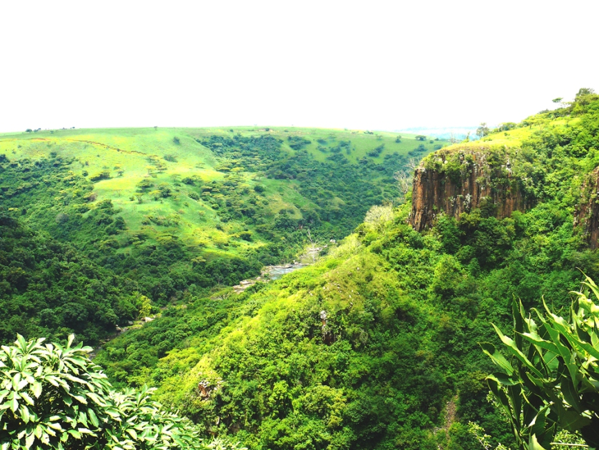 Green landscape howick falls KZN South africa