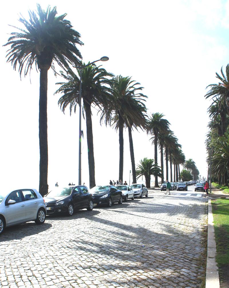 Promenade  Foz do Douro top ten things to do in Porto